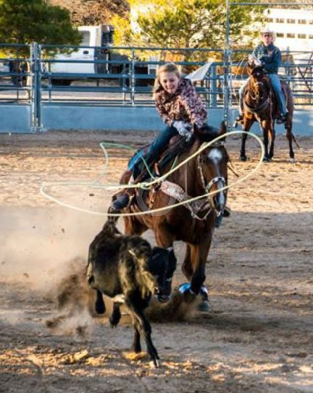 lil-britches-roping