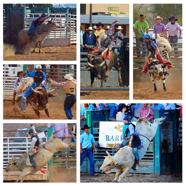 sandy-valley-ranch-bullriding-photos